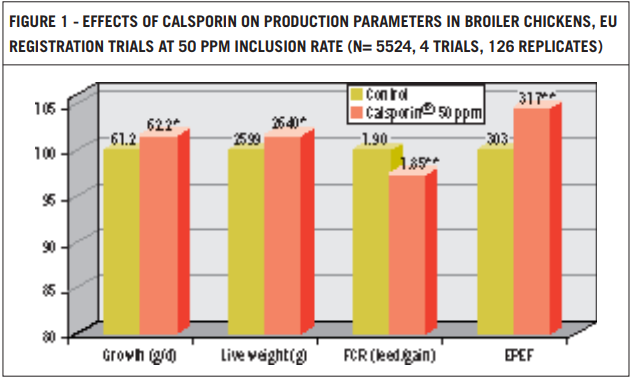 Effects of Calsporin on production parameters in broiler chickens