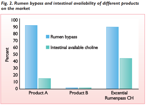 Rumen bypass and intestinal availability of different products