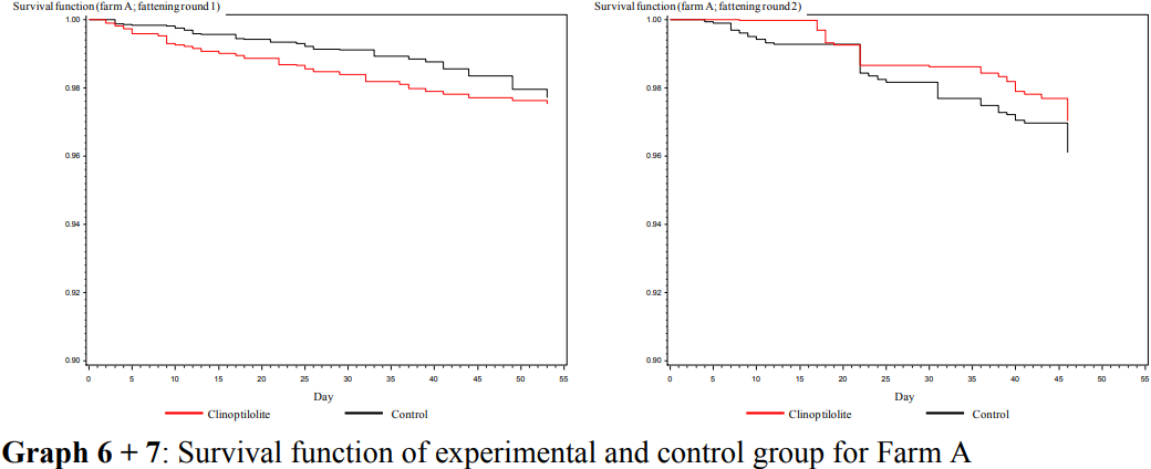 Survival function with and without clinoptilolite