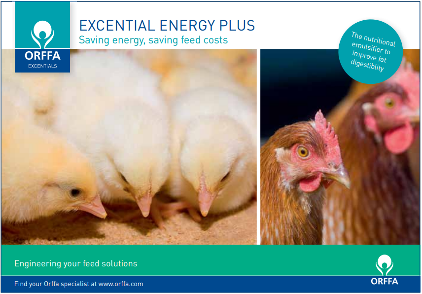 Influence of the age of chicken on the metabolisable energy values of poultry diets.