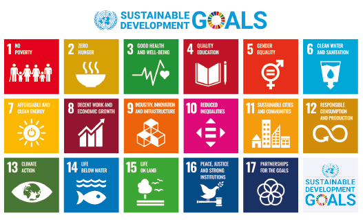 sustainable goals